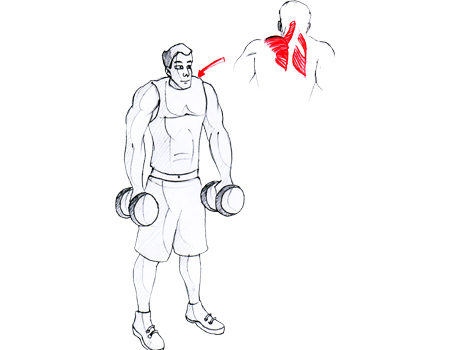 how to fix lifters shoulder