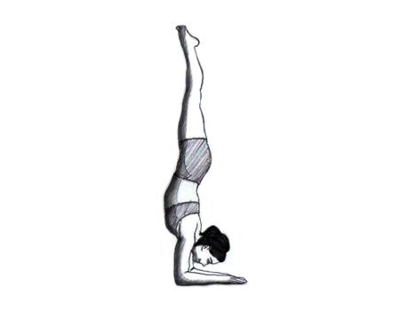 Personal Trainer : Yoga : Bhasinsoft