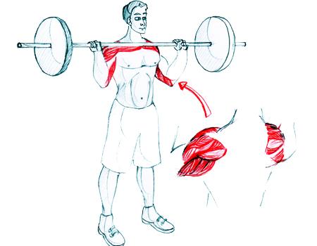 Personal Trainer Weight Training Bhasinsoft